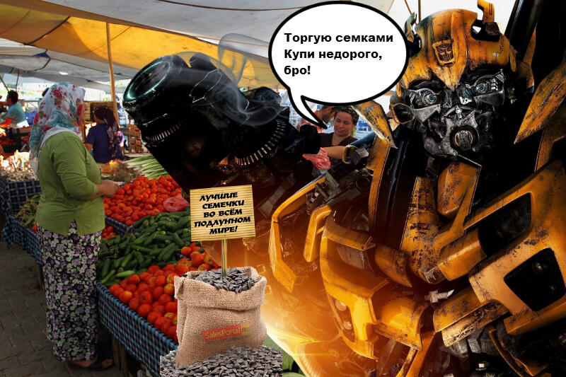 forex роботы