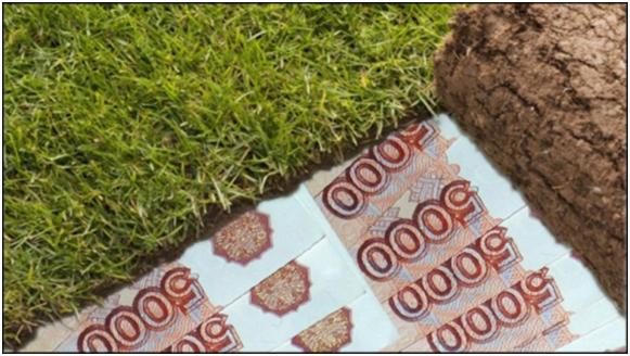 investicii-v-zemlyu-pokupka-zemelnyx-uchastkov1