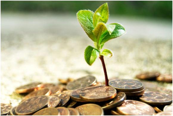 fond-pryamyx-investicij-fpi