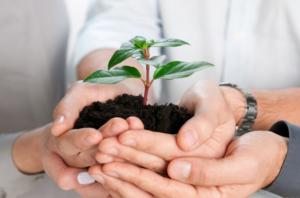 С чего начать малый бизнес: полезные советы начинающим предпринимателям